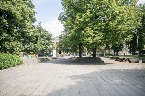 Atgis Reformatų sodas Vilniuje!