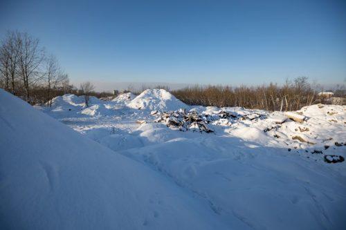 Pradedami sostinės ledo arenos projektavimo darbai