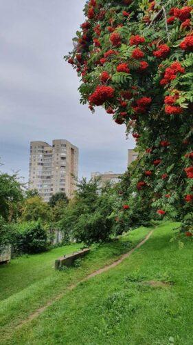 Parduodu 4 k. butą Vilniuje, Fabijoniškėse